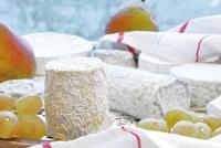 Déguster les spécialités locales le chabichou châtellerault